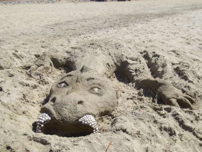 Sand sculpture dragon.