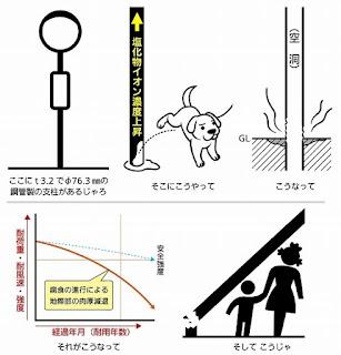 risco de choque em cães