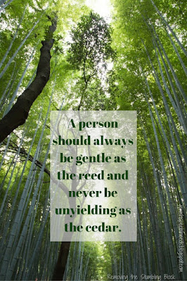 A person should always be gentle as the reed and never be unyielding as the cedar; Removing the Stumbling Block