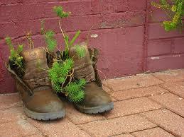 Pavlock of Gardening