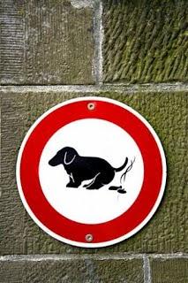 Kotoran anjing, untuk obat radang tenggorokan | inform-kesehatan.blogspot.com