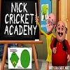 Online Nick Cricket Academy Game