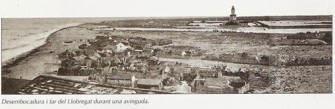 Resultat d'imatges de Camps de cultiu baix llobregat 1900