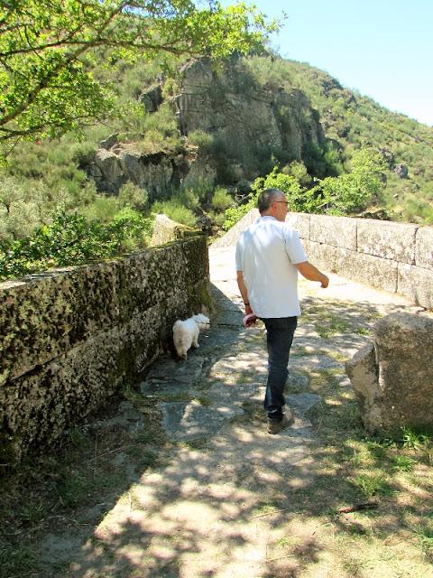 homem passeando um cão numa ponte de pedra