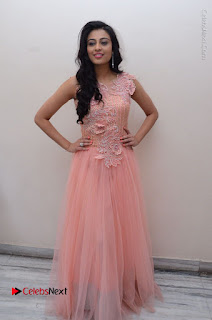 Actress Neha Hinge Stills in Pink Long Dress at Srivalli Teaser Launch  0145.JPG