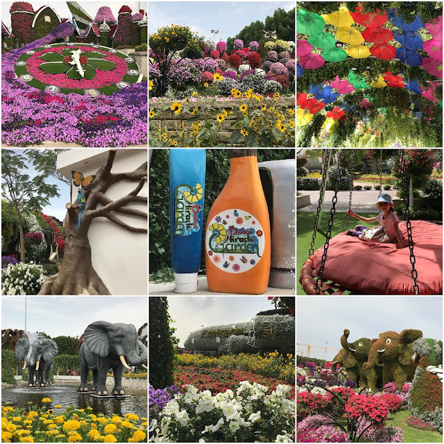 Dubai Miracle Garden collage of favourite photos