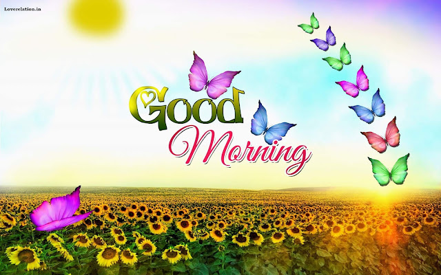 Good Morning Pictures