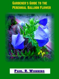Gardener's Guide to Perennial Balloon Flower