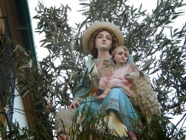 Procesión extraordinaria a la Catedral del colegio Divina Pastora por su centenario en Córdoba