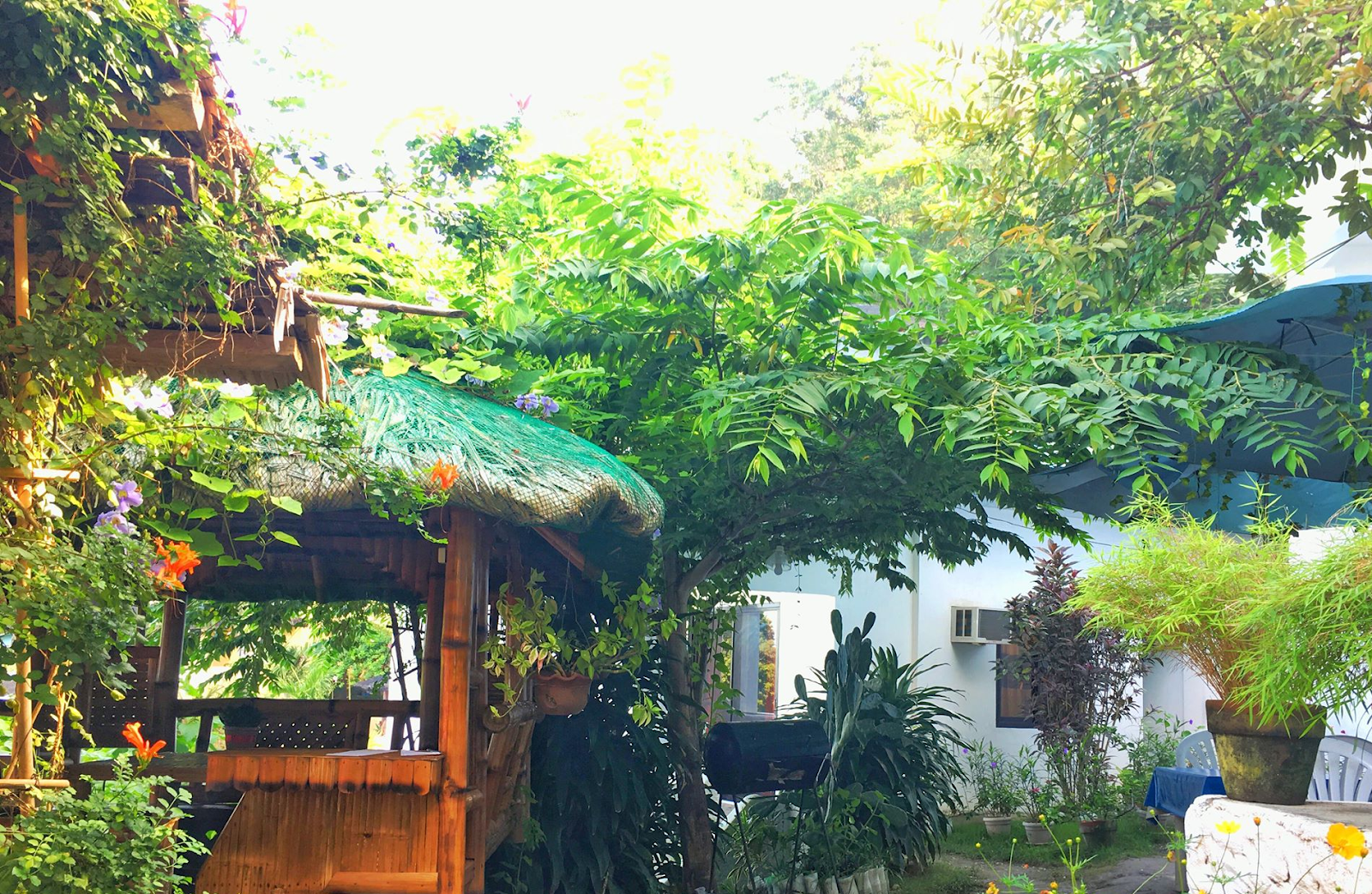 BELLEVUE COTTAGES PUERTO GALERA BLOG REVIEW