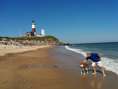 Beautiful dog friendly beach at Camp Hero, Montauk Long Island, NY.  You can see the Montauk lighthouse in the distance, the 4th oldest operational lighthouse in the U.S.