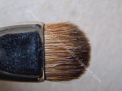 Cargo SmokeyEye Brush pennello