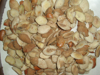 OGBONO (IRVINGIA GABONENSIS) CAN HELP WITH WEIGHT LOSS, DIABETES AND OTHERS