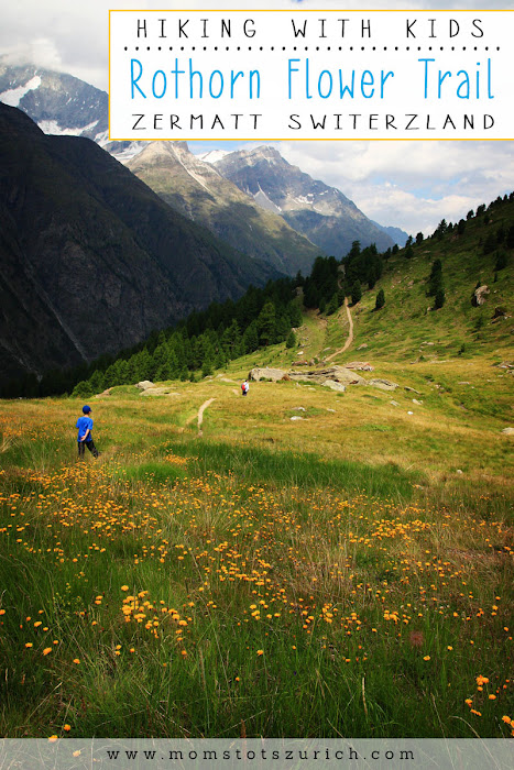 Beautiful alpine hike for family through wildflowers. Hike ends at a great playground with a view of the Matterhorn. Zermatt Switzerland