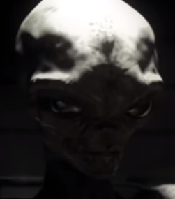 Alien Interview.