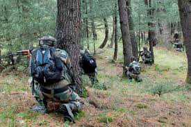 2-militants-killed-in-south-kashmir-encounter