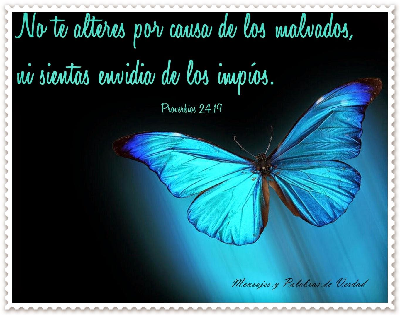 Mensajes Y Palabras De Verdad Proverbios Biblicos En Bellas Imagenes