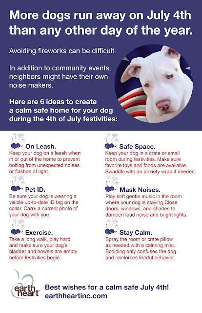 Earth Heart Inc.: More Pets Go Missing on July 4th Than Any Other Day of the Year. Please Read and Keep Your Pet Safe.