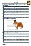 https://www.legakulie-onlineshop.de/Hund-Schularbeit-Klassenarbeit-Lernzielkontrolle