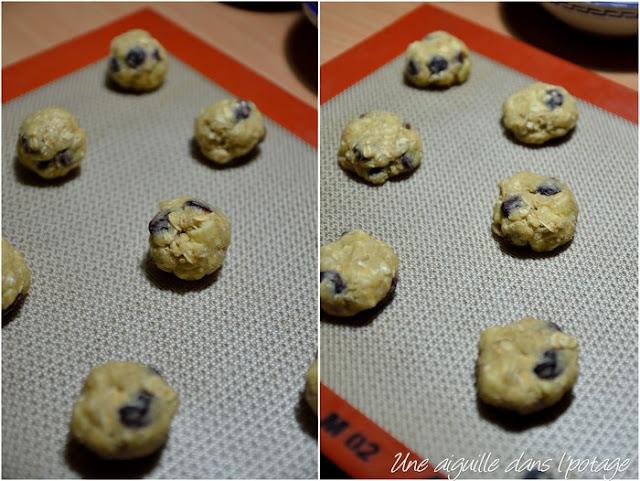 Préparation pour biscuit chocolat blanc flocons d'avoine cranberries