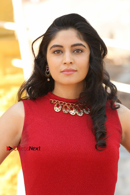 Telugu Actress Zahida Sam Latest Pos in Red Gown at RF Films New Movie Opening  0007.JPG