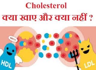 cholesterol-diet-food-info-in-hindi