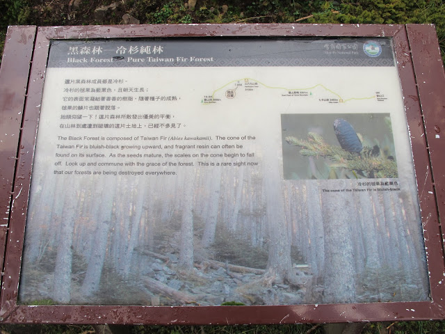IMG 6015 - 台中登山│台灣第二高峰,雪山主峰、東峰兩天一夜攻頂!這兩天是我最難熬的一夜