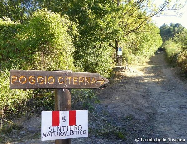 Camminata nel Valdarno