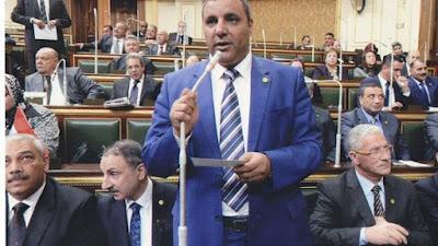النائب الدكتور سمير رشاد عضو مجلس النواب