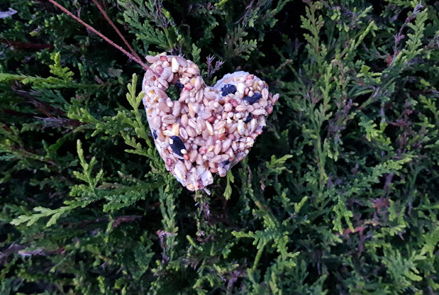 How I made heart shaped bird feeders for Valentine's Day