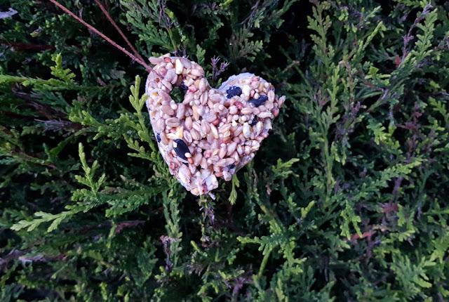Heart Shaped Bird Feeder
