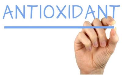 Khasiat Daun Kelor sebagai Antioksidan