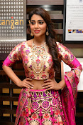 shriya saran new sizzling photos gallery-thumbnail-12