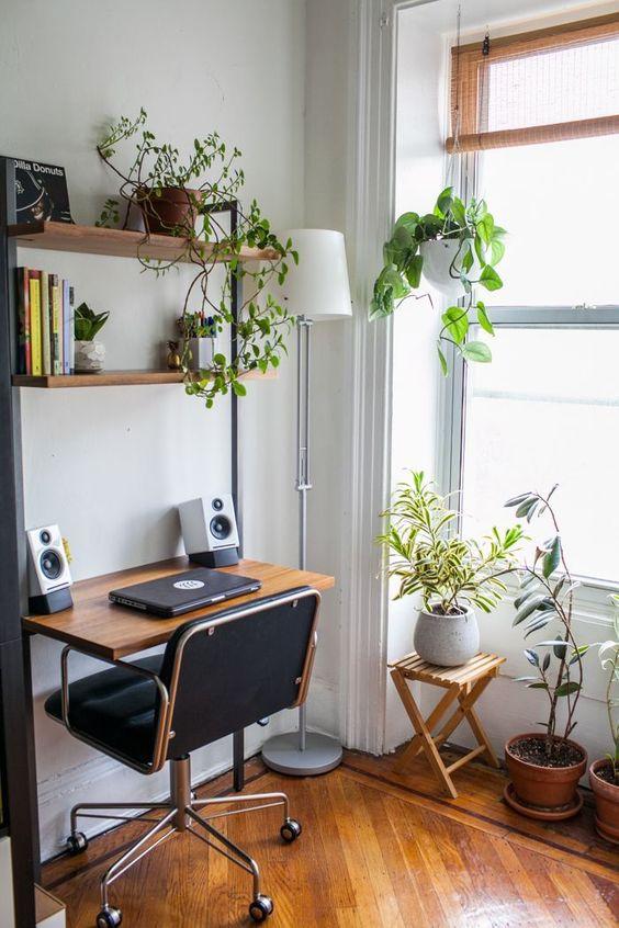 decoração de home office pequeno com plantas