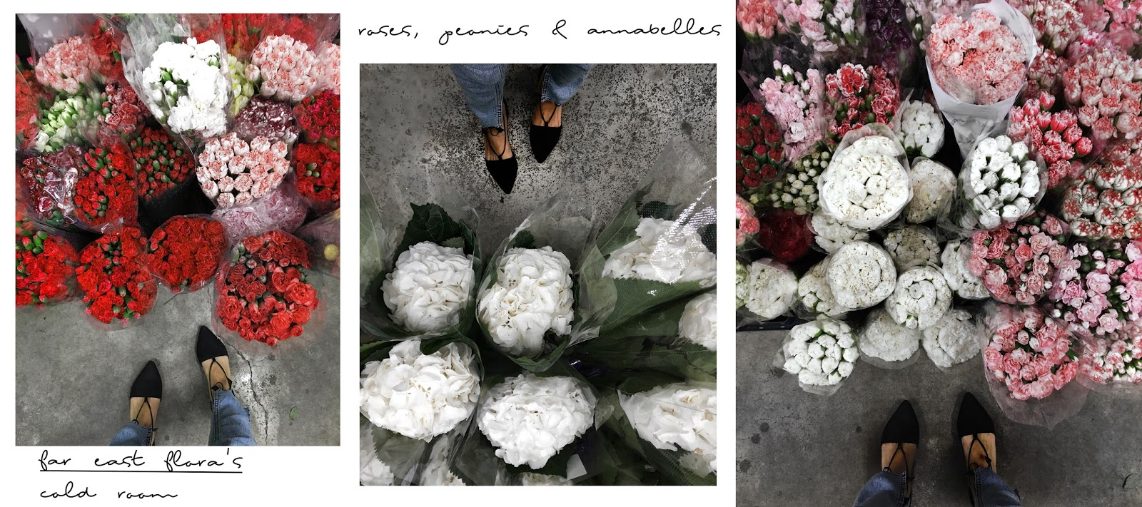 where to get fresh cut flowers in singapore so im always on the lookout for cheap and fresh flowers from local wet markets and wholesale florists so far there are three places where i usually izmirmasajfo