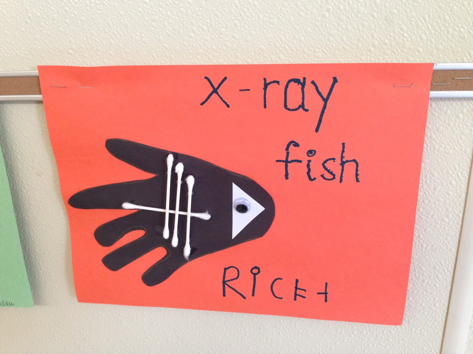 Kindergarten And Mooneyisms X Is For X Ray Fish