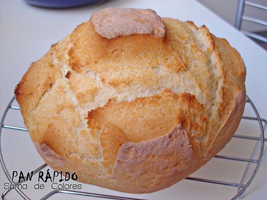 Pan-rapido-03