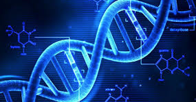 """""""Shocking New DNA Study Reveals That Human Beings Are Divided Into Two Genders!"""" --Who Knew?"""