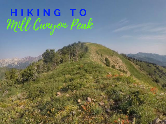 Hiking to Mill Canyon Peak, Utah