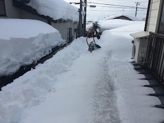 昨日までの屋根の雪