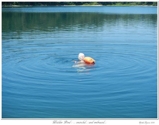 Walden Pond: ... encircled... and embraced...