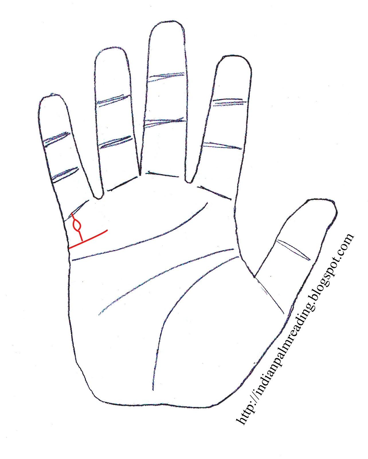 Island On Children Line In Palmistry | INDIAN PALM READING