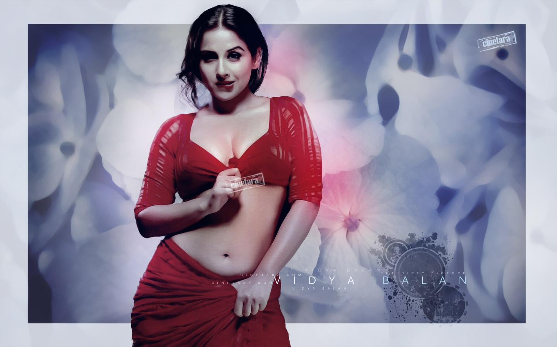 Images Of Indian Actress Vidya Balan Hot Photosdirty -3534