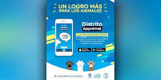 Distrito Appnimal, la app para adoptar y reportar mascotas perdidas