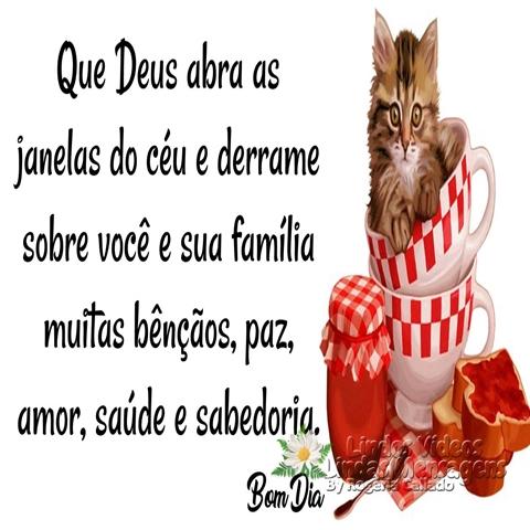 Que Deus abra as  janelas do céu e derrame  sobre você e sua família  muitas bênçãos, paz,  amor, saúde e sabedoria.  Bom Dia!