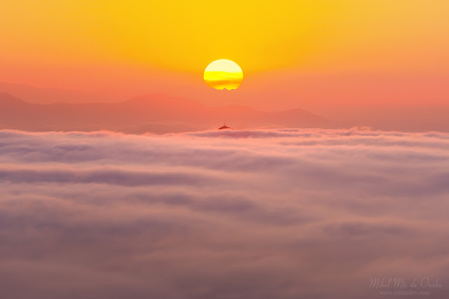 Mar de niebla en el monte