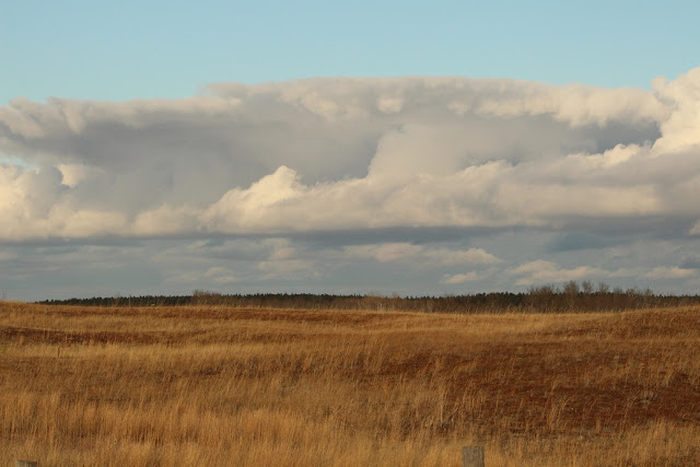 low clouds over prairie field