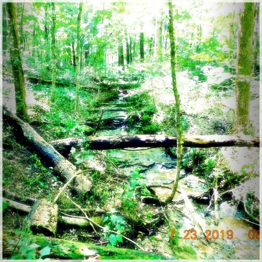 HikingTrails-93905049936