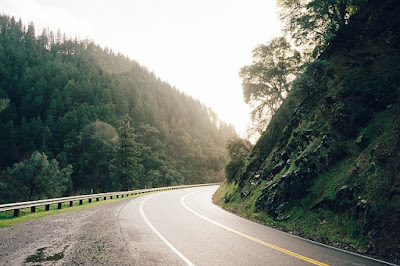 Tunjangan fungsional pengendali ekosistem hutan