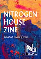 nitrogen house zine featuring poem by bridget eileen